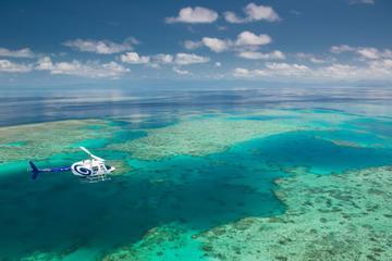 Excursão no litoral de Cairns: Green...
