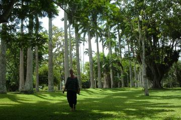 Aburi Botanical Gardens and Shai Hills Tour