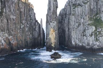 Excursión de un día a la península de Tasmania y el sitio histórico...