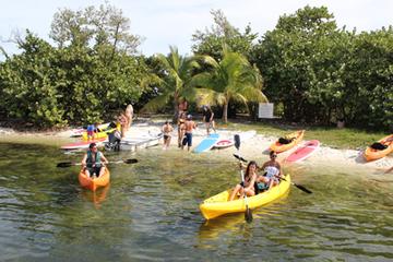 Alquiler de kayak y equipo de surf de remo en Coconut Grove