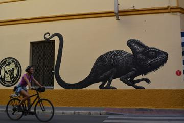 Recorrido en bicicleta por lugares menos transitados de Málaga