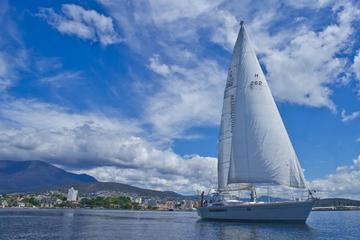 Half-Day Sailing on the Derwent River...