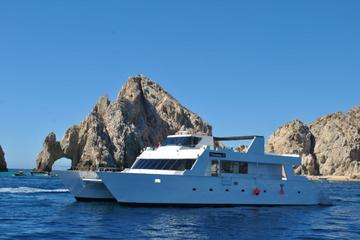 Crucero de buceo en los arrecifes del...