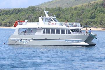 Encuentro con delfines y aventura de buceo desde Lahaina a Lanai