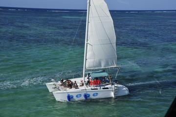 Private Catamaran - Small Boat Charter