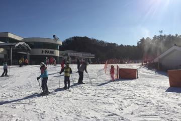 Full Day Ski Tour at Jisan Forest and