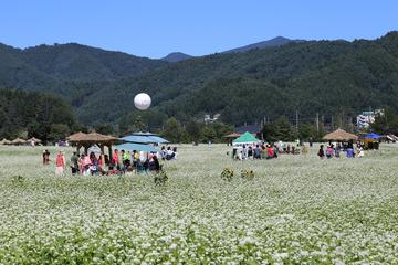 Hyoseok Cultural Festival with...