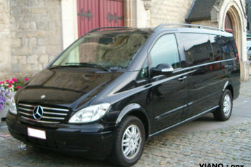 Private Arrival Transfer: Brussels International Airport to Brussels...