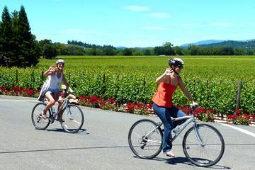 Fietstocht door het wijnland en picknicklunch, met vervoer vanuit San ...