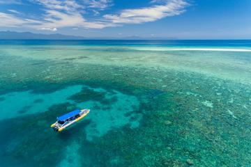 Ocean Safari Great Barrier Reef Experience in Cape Tribulation