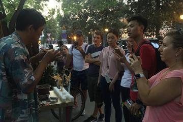 Small Group Hutong Rickshaw,Houhai,Drum Tower,Hutong Courtyard Visit with Lunch