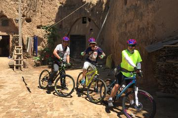 Terracotta Warriors and Lishan mountain biking tour with private transportation