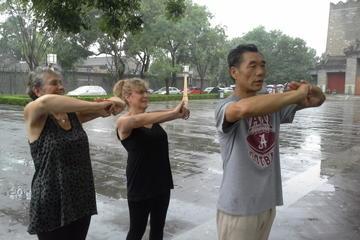Visite privée: Pékinois pour une journée