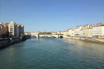 Lyon Panoramic City Tour in Minivan - Private Tours
