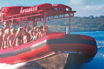 Aventura de esnórquel en Molokini y tortugas verdes desde Maui para...