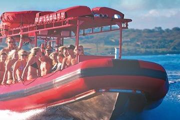 Mergulho com snorkel para grupo pequeno em Molokini e aventura com a...