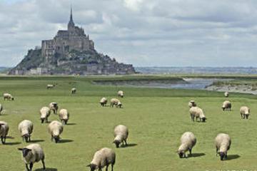 Delux Mont Saint-Michel Tour with a professional Japanese guide