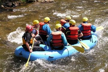 Falmouth Shore Excursion: Jamaica River-Rafting Adventure on the Rio...