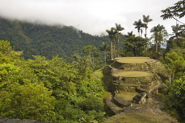 Ciudad Perdida: 4- or 5-Day Trek from...