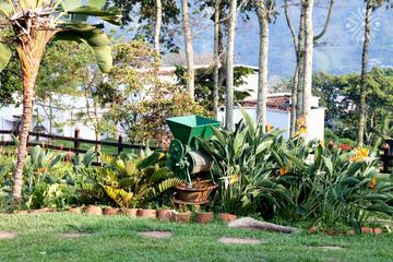 Experiencia en plantación de café exprés