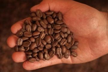 Recorrido del café en Bogotá