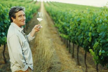 Douro Valley Wine Tour vanuit Porto, inclusief lunch