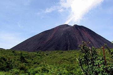Excursión de un día al volcán Pacaya desde Antigua