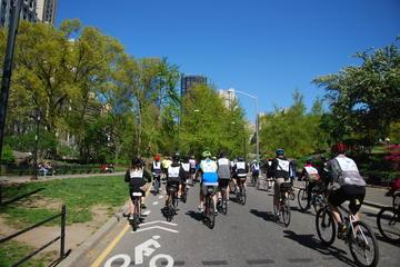 Recorrido en bicicleta por Central Park en español