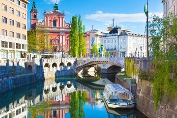 Full-Day Private Tour: Ljubljana and...