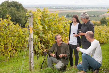 Small-Group Quebec Wine Tour from Montreal with Optional Gourmet...