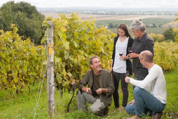 Weintour in kleiner Gruppe in Québec...