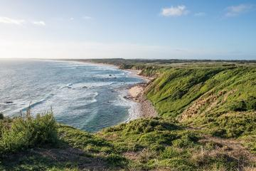 Phillip Island Hike, Bike and Wildlife Adventure