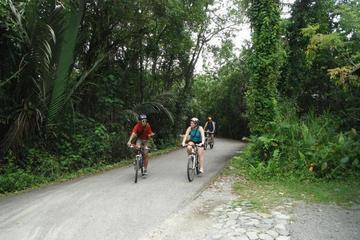 ウビン島をめぐるシンガポール サイクリング ツアー