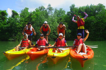 Pulau Ubin Mangrove Kayak Adventure...