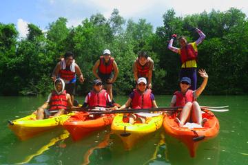 Pulau Ubin-Mangrove:n Kajakabenteuer ab Singapur