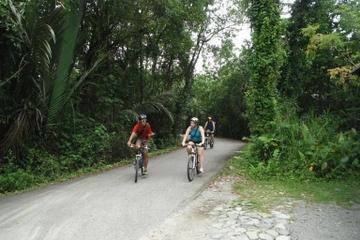 Singapur-Fahrradabenteuer rund um Pulau Ubin