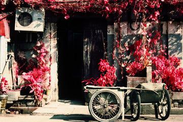 Balade privée de 2heures dans les sites cachés de Shanghai