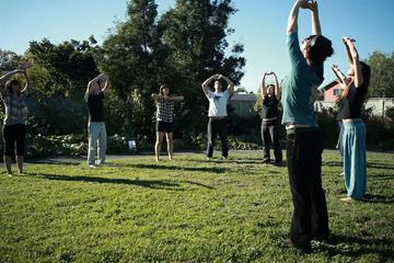 Private Chinese Qi Gong Workshop