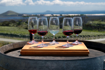 Niagara-Fälle-Weintour mit Käseverkostung