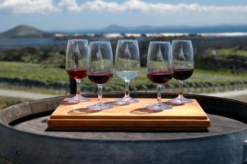 Recorrido vinícola por Niagara Falls con maridaje de quesos