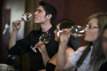 Tour de dégustation de vin sur Niagara-on-the-Lake avec déjeuner ou...
