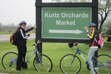 Tour à vélo et dégustation de vin à Niagara-on-the-Lake avec déjeuner...