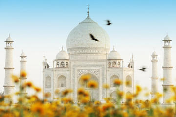 Taj Mahal with tribal village tour