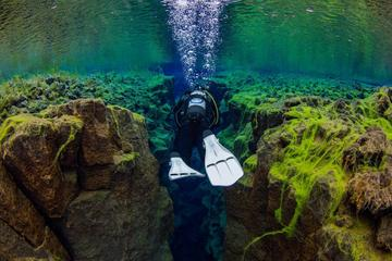 Diving in Silfra Fissure - Day Trip...