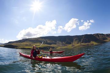 Excursión de un día para practicar piragüismo desde Reikiavik