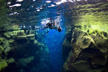 Golden Circle-tour en snorkelen met vervoer vanuit Reykjavik