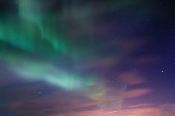 Recorrido por las luces del norte desde Reikiavik: Cena de langosta...