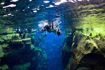 Small-Group Snorkeling Experience at Silfra Fissure in Thingvellir...