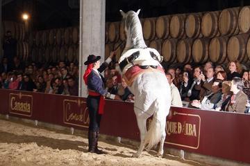 Gita giornaliera a Jerez e Cadice dalla Costa del Sol con tour delle