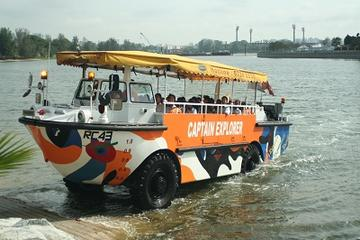 Singapore Flyer bykort: Singapore Flyer, Duck Tour og Food Trail.